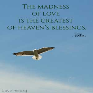 The-madness-of-love-is-the-greatest-of-heavens-blessings-quote-image